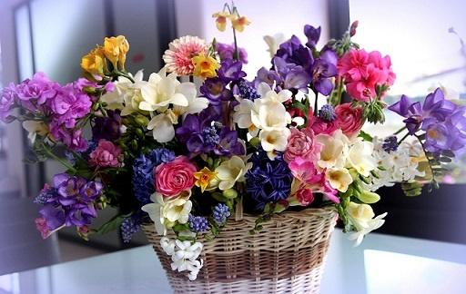 Бизнес в сфере цветов по франшизе